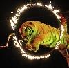 Цирки в Волжске